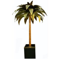 Impressive Palm Tree by Maison Jansen, Paris
