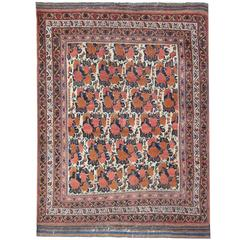 Antique Persian Rugs, Carpet from Afshar