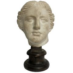 Academic Cast of Plaster Depicting a Nike Head