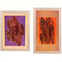 Josef Albers Abstract Leaves Lithographs from Interaction of Color
