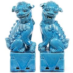 Pair of Turquoise-Glazed Porcelain Chinese Foo Dogs