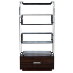 Geometric Stainless Steel Etagere with Macassar Base
