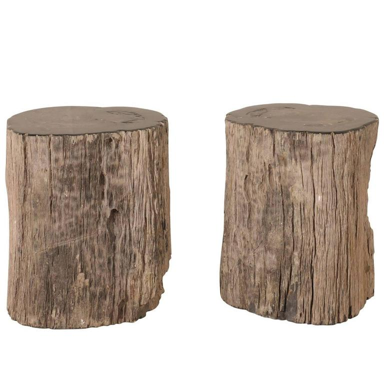 Pair of Black Petrified Wood Fossil Drink or Side Tables, Natural, Polished Wood 1