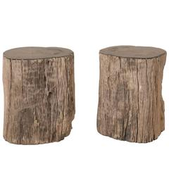 Pair of Black Petrified Wood Fossil Drink or Side Tables, Natural, Polished Wood