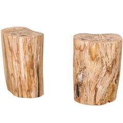 Pair of Light Color Petrified Wood Fossil Drink or Side Tables, Natural Pattern
