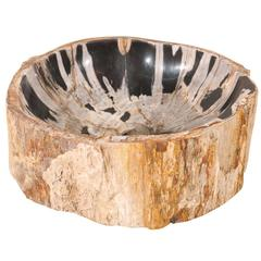 Black and Cream Colored Petrified Wood Sink Great for a Powder Room Vanity