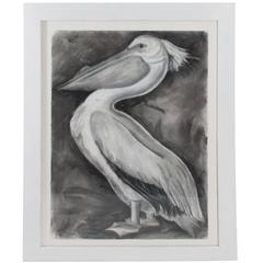 Pastel on Paper of a Pelican by Marianne Stikas