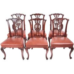 Quality Set of Six 19th Century Carved Mahogany Dining Chairs