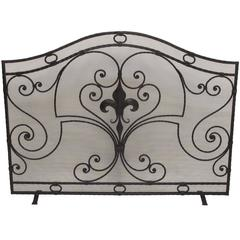 Wrought Iron Fireplace Screen with Fleur-De-Lis