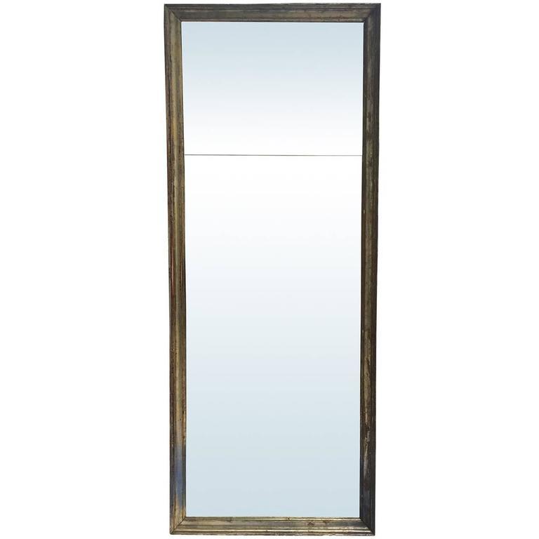 19th Century Jumbo Italian Giltwood Mirror