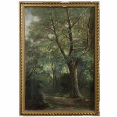 19th Century French Barbizon School Antique Painting of a Forest Scene