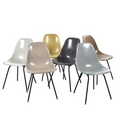 Set of Six Eames DSX Herman Miller, USA Dining Chairs