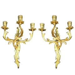 Pair of French Louis XV Style Sconces Gilt Bronze Three-armed Wall Candelabra