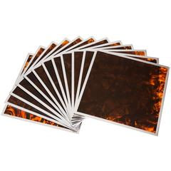 Chrome and Tortoise Shell Acrylic Place Mats