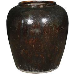 Chinese Monumental Pickling Egg Jar