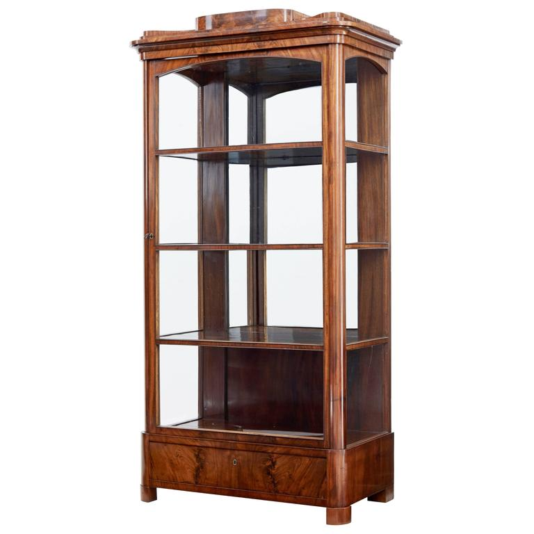 Display Kitchen Cabinets For Sale: 19th Century Danish Mahogany Glazed Display Cabinet For