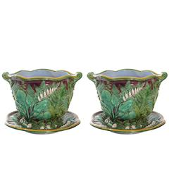 Minton Majolica Cache Pots and Saucers