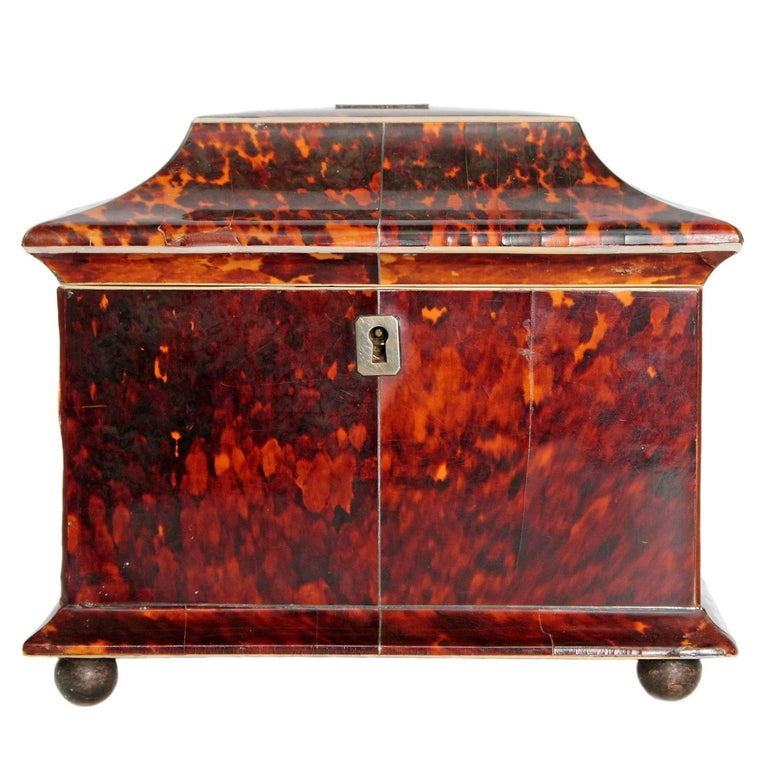 19th Century English Tortoise Shell Tea Caddy For Sale