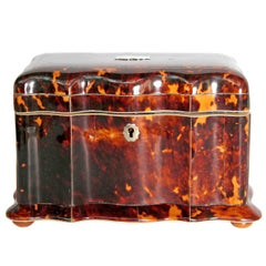 19th Century English Regency Tortoiseshell Tea Caddy
