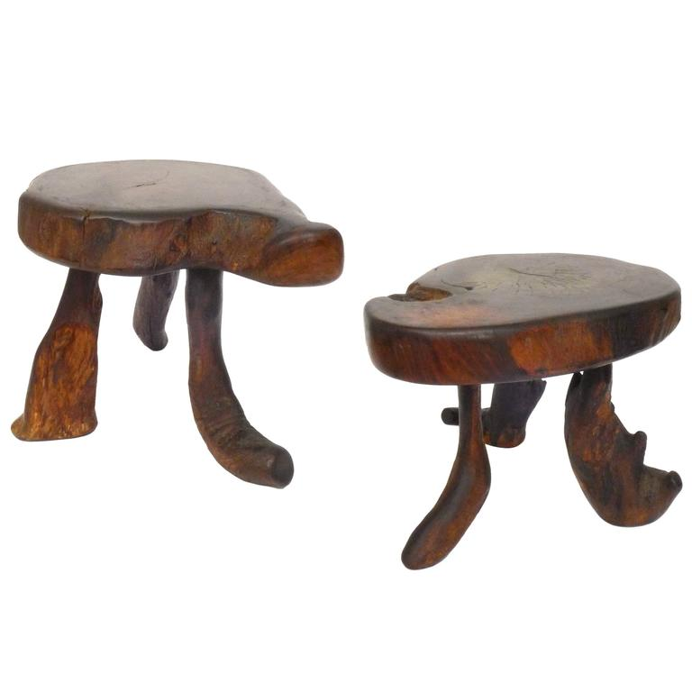 Pair of Organic Wood Stools or Side Tables 1