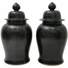 Extra Large Pair of Black Ceramic Chinese Ginger Jars with Lids