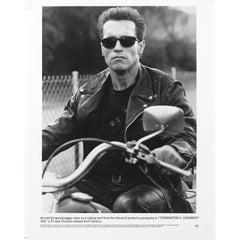 """The Terminator"" Photograph"