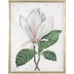 Contemporary Magnolia Drawing