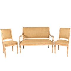 Early 20th Century French Seating Garniture