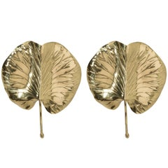 Pair of Chapman Leaf Sconces