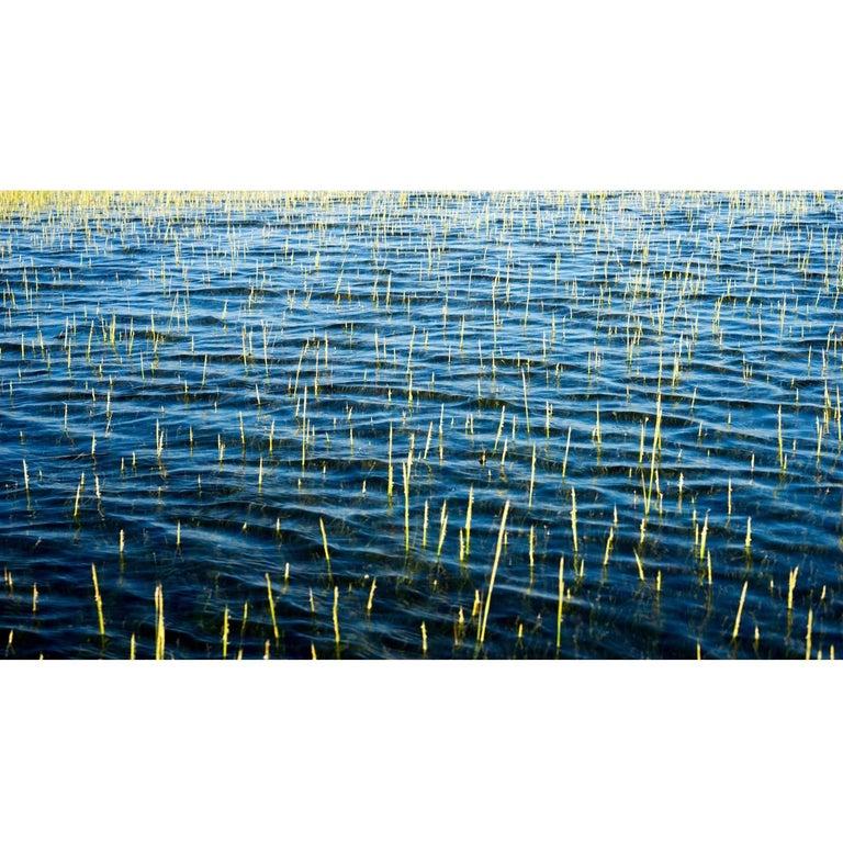 Large Landscape Color Photographic Print by Janet Cass