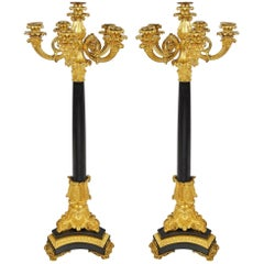 Pair of Louis XVI Style Candelabra