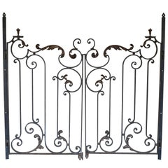 Pair of Early 20th Century, Forged Iron and Brass Gates