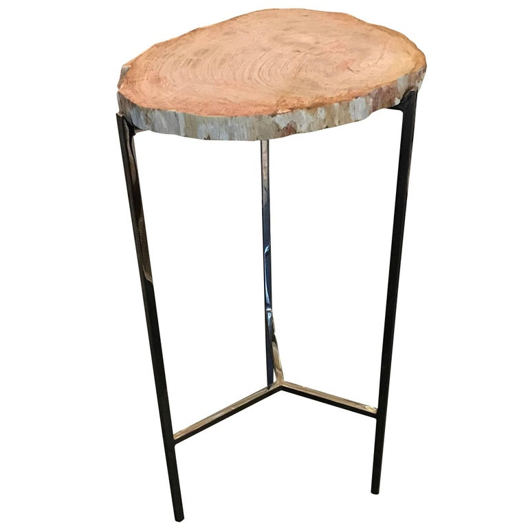 Petrified Wood Slice Cocktail Table, Indonesia, Contemporary