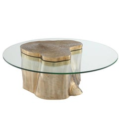 Solid Trunk Coffee Table in Solid Polished Brass Finish