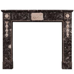 French Louis XVI St Anne's Marble Fireplace