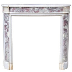 19th Century Violet Breccia and Carrara Marble Fire Surround