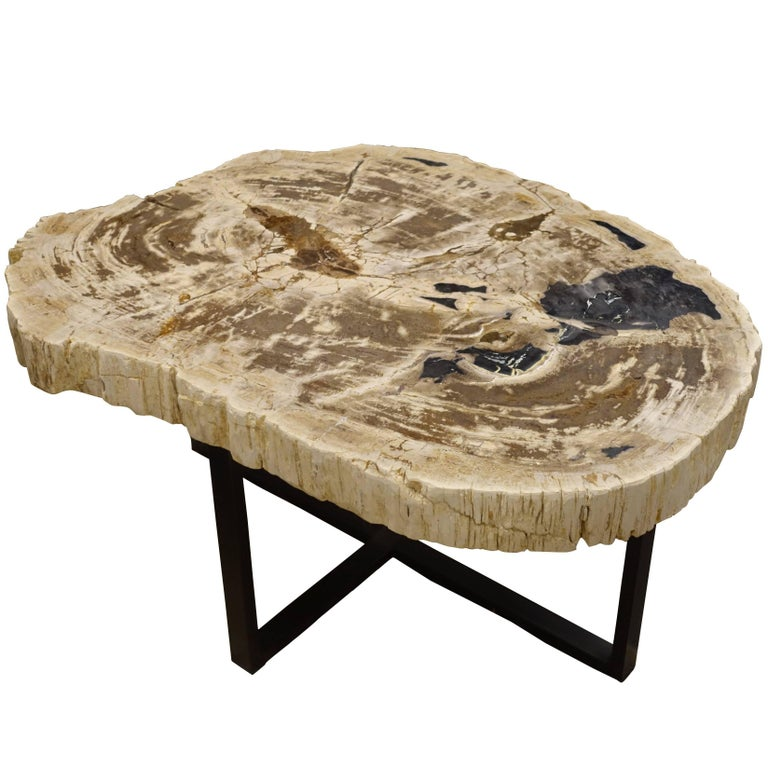 Extra Large Stone Coffee Table: Extra Large Thick Slice Petrified Wood Coffee Table