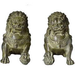 Giant Size Bronze Foo Dogs, Pair, Very Fine