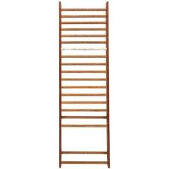 Gymnasium Ladder