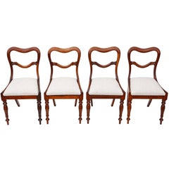 Antique Quality Set of Four William IV Rosewood Balloon Back Dining Chairs