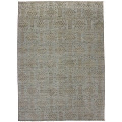 Transitional Area Rug with Modern Style in Light Colors