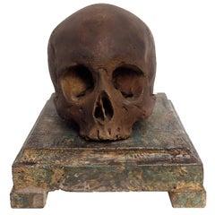 Beautiful Memento Mori Plaster Skull over a Wooden Base, Italy, circa 1880