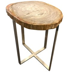 Sliced Taupe Petrified Wood Top, Nickel Base Side Table, Indonesia, Contemporary