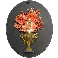 Wunderkammer Naturalia Specimen, Branches of Italian Coral