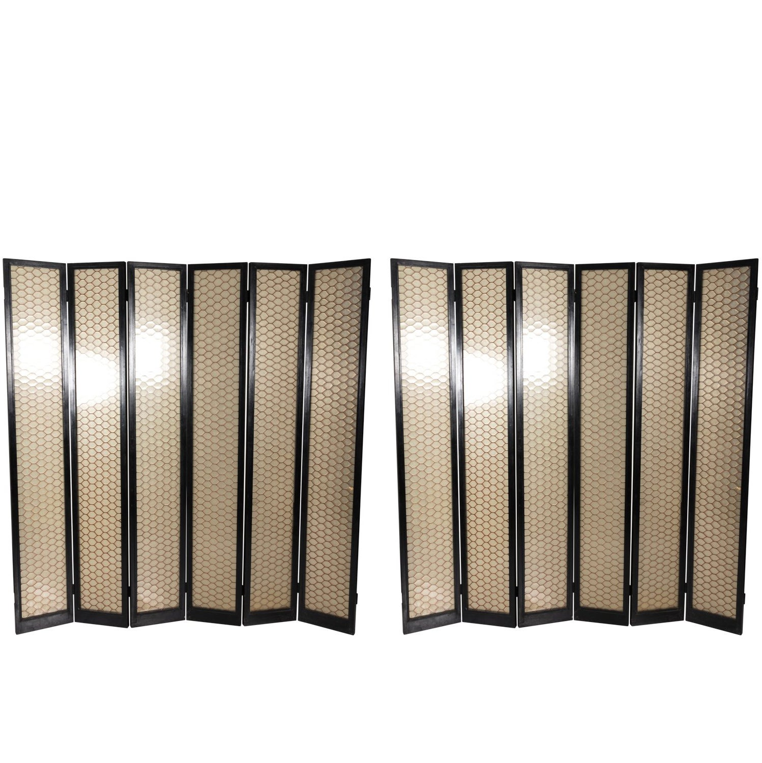 Black Lacquered Wood and Lucite Screen