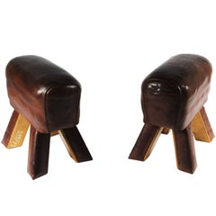 Pair of Leather Gym Stools