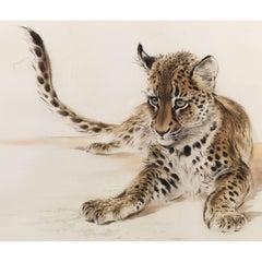 Lion Cub Watercolour by Ralph Thompson MBE