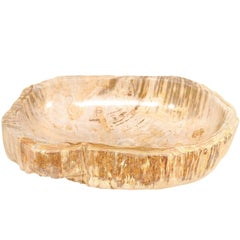 Oval Shaped Polished Petrified Wood Sink with Lovely Beige and Cream Color