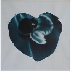 """Heavenly Body XVI"" by Taeko Mima Oil on Canvas Painting, 1981"