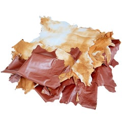 16 Cowhides for Upholstery or Decoration